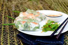 Φρέσκοι ρόλοι άνοιξη με το χοιρινό κρέας, τη γαρίδα και τα χορτάρια Στοκ Φωτογραφίες