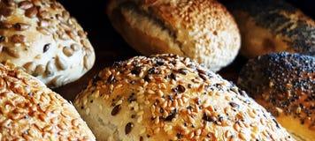 φρέσκοι ψωμί-ρόλοι Στοκ φωτογραφίες με δικαίωμα ελεύθερης χρήσης