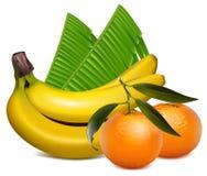 Φρέσκοι tangerine καρποί με τα πράσινα φύλλα και banan Στοκ Φωτογραφίες