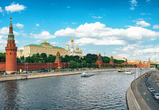 Φρέσκος άνηθος με τις πτώσεις νερού Στοκ φωτογραφίες με δικαίωμα ελεύθερης χρήσης