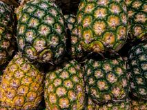 Φρέσκος ανανάς με τον πράσινο και κίτρινο φλοιό στο καλάθι στην αγορά Στοκ φωτογραφία με δικαίωμα ελεύθερης χρήσης