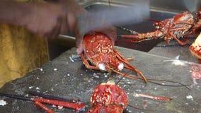Φρέσκος αστακός καθαρισμού στο pizzeria της MAC απόθεμα βίντεο