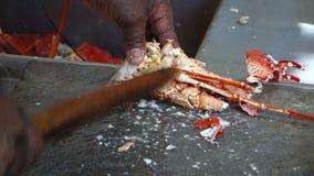 Φρέσκος αστακός καθαρισμού στο pizzeria της MAC φιλμ μικρού μήκους