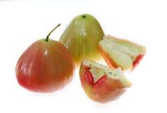 Φρέσκος αυξήθηκε μήλο Στοκ Εικόνα