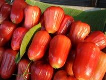 Φρέσκος γλυκός juicy αυξήθηκε Apple Στοκ φωτογραφία με δικαίωμα ελεύθερης χρήσης