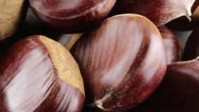 Φρέσκος φρέσκος κάστανων που επιλέγεται φιλμ μικρού μήκους