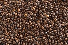 Φρέσκος, καφές ενδυνάμωσης με τη σοκολάτα Στοκ Εικόνες