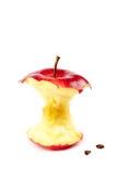 Φρέσκος κόκκινος πυρήνας μήλων στο άσπρο υπόβαθρο Στοκ φωτογραφία με δικαίωμα ελεύθερης χρήσης