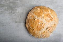 φρέσκος κύκλος ψωμιού Στοκ φωτογραφία με δικαίωμα ελεύθερης χρήσης