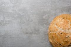 φρέσκος κύκλος ψωμιού Στοκ Εικόνες