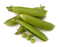 φρέσκος λοβός πράσινων μπι& στοκ φωτογραφία με δικαίωμα ελεύθερης χρήσης