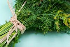 Φρέσκος οργανικός άνηθος που δένεται με ένα άχυρο που απομονώνεται σε πράσινο στοκ φωτογραφία