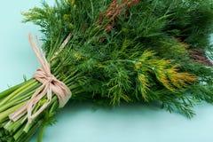 Φρέσκος οργανικός άνηθος που δένεται με ένα άχυρο που απομονώνεται σε πράσινο στοκ φωτογραφίες