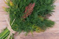 Φρέσκος οργανικός άνηθος που δένεται με ένα άχυρο που απομονώνεται στο ξύλο στοκ εικόνες