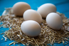 φρέσκος οργανικός αυγών στοκ φωτογραφίες