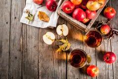 Φρέσκος οργανικός χυμός της Apple Στοκ εικόνες με δικαίωμα ελεύθερης χρήσης