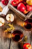 Φρέσκος οργανικός χυμός της Apple Στοκ Φωτογραφία