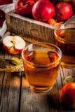 Φρέσκος οργανικός χυμός της Apple Στοκ Εικόνες