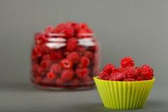 Φρέσκος οργανικός rapsberry στοκ εικόνα με δικαίωμα ελεύθερης χρήσης