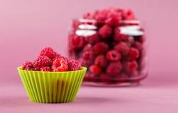 Φρέσκος οργανικός rapsberry στοκ εικόνες με δικαίωμα ελεύθερης χρήσης
