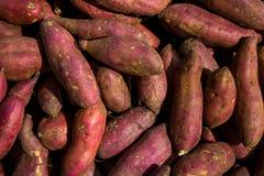Φρέσκος πορφυρός σωρός διοσκορέων Γλυκιά πατάτα για την πώληση στην τοπική αγορά το υπόβαθρο διοσκορέων, σωρός της κόκκινης ή πορ στοκ φωτογραφίες με δικαίωμα ελεύθερης χρήσης