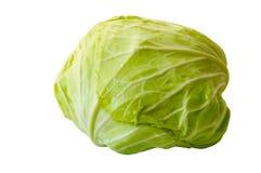 φρέσκος πράσινος λάχανων στοκ εικόνες