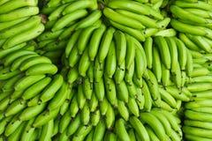 φρέσκος πράσινος μπανανών στοκ φωτογραφία