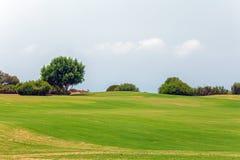 Φρέσκος πράσινος του τομέα γκολφ Στοκ Φωτογραφία