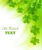φρέσκος πράσινος τριφυλ&lam στοκ εικόνες