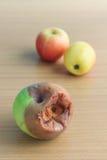 φρέσκος σάπιος μήλων Στοκ Φωτογραφίες