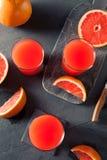 Φρέσκος συμπιεσμένος οργανικός χυμός γκρέιπφρουτ στοκ εικόνες με δικαίωμα ελεύθερης χρήσης