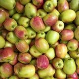 φρέσκος υγρός μήλων Στοκ Εικόνα