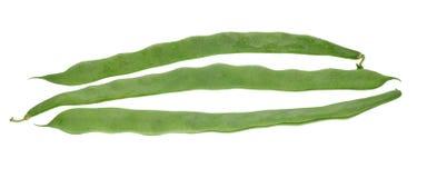 φρέσκος φασολιών που απ&omic Στοκ εικόνα με δικαίωμα ελεύθερης χρήσης