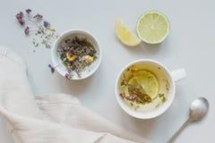 φρέσκος χρόνος τσαγιού φραουλών πορσελάνης πιάτων της Κίνας Φλυτζάνι του καυτού βοτανικού τσαγιού και του ξηρού τσαγιού στο γκρίζ Στοκ Εικόνες