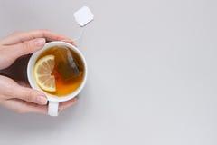 φρέσκος χρόνος τσαγιού φραουλών πορσελάνης πιάτων της Κίνας Χέρια που κρατούν το φλυτζάνι του καυτού μαύρου τσαγιού στο μπλε υπόβ Στοκ εικόνες με δικαίωμα ελεύθερης χρήσης