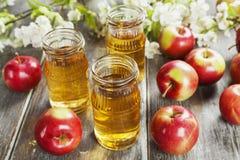 φρέσκος χυμός μήλων Στοκ Φωτογραφίες