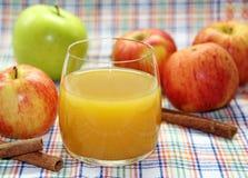 φρέσκος χυμός μήλων μήλων Στοκ Φωτογραφίες