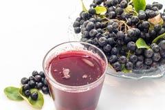 Φρέσκος χυμός του μαύρου chokeberry melanocarpa Aronia στο γυαλί και του μούρου στο δοχείο, που απομονώνεται στο άσπρο υπόβαθρο Στοκ Εικόνες