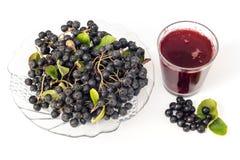 Φρέσκος χυμός του μαύρου chokeberry melanocarpa Aronia στο γυαλί και beries στο δοχείο, που απομονώνεται στο άσπρο υπόβαθρο Στοκ Εικόνες