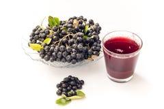 Φρέσκος χυμός του μαύρου chokeberry melanocarpa Aronia στο γυαλί και beries στο δοχείο, που απομονώνεται στο άσπρο υπόβαθρο Στοκ εικόνες με δικαίωμα ελεύθερης χρήσης