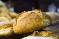 Φρέσκος ρόλος ψωμιού Στοκ Φωτογραφίες