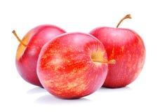 Φρέσκο άσπρο υπόβαθρο μήλων Στοκ φωτογραφίες με δικαίωμα ελεύθερης χρήσης