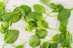 Φρέσκο ακατέργαστο πράσινο σπανάκι μωρών στο γκρίζο ξύλο Στοκ εικόνα με δικαίωμα ελεύθερης χρήσης