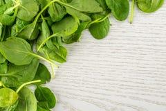 Φρέσκο ακατέργαστο πράσινο σπανάκι μωρών στο γκρίζο ξύλο Στοκ φωτογραφία με δικαίωμα ελεύθερης χρήσης