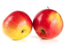 φρέσκο απομονωμένο κόκκινο λευκό ανασκόπησης μήλων Στοκ εικόνα με δικαίωμα ελεύθερης χρήσης