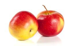 φρέσκο απομονωμένο κόκκινο λευκό ανασκόπησης μήλων Στοκ Φωτογραφία