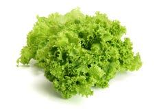 φρέσκο απομονωμένο λευ&kappa Φύλλο σαλάτας Στοκ Εικόνα
