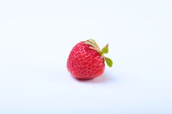 φρέσκο απομονωμένο μακρο λευκό στούντιο φραουλών ανασκόπησης Εκλεκτική εστίαση Στοκ φωτογραφία με δικαίωμα ελεύθερης χρήσης