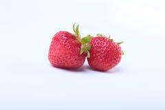 φρέσκο απομονωμένο μακρο λευκό στούντιο φραουλών ανασκόπησης Εκλεκτική εστίαση Στοκ Εικόνα