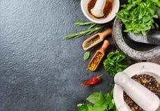 φρέσκο απομονωμένο χορτάρια λευκό καρυκευμάτων φρέσκων κρεμμυδιών Στοκ φωτογραφία με δικαίωμα ελεύθερης χρήσης